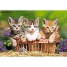 """Пазл: 500 """"Три котёнка"""""""