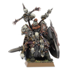 Warhammer: Wulfrik the Wanderer